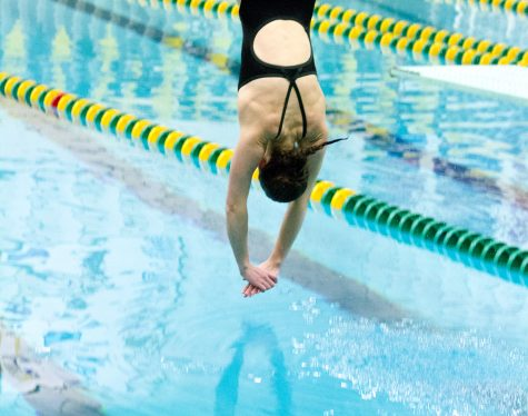 Junior diver earns accolades over the year