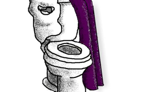 A public threat: phantom flush
