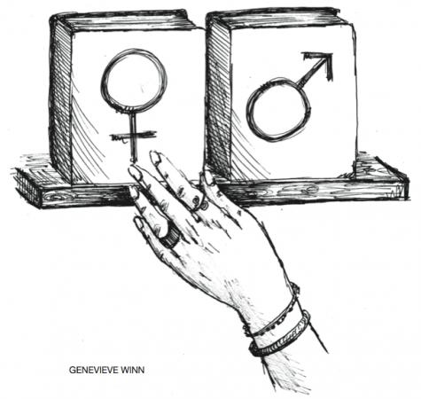 Gender dynamic affects academic pursuits