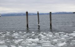 Chinese officials study Lake Champlain