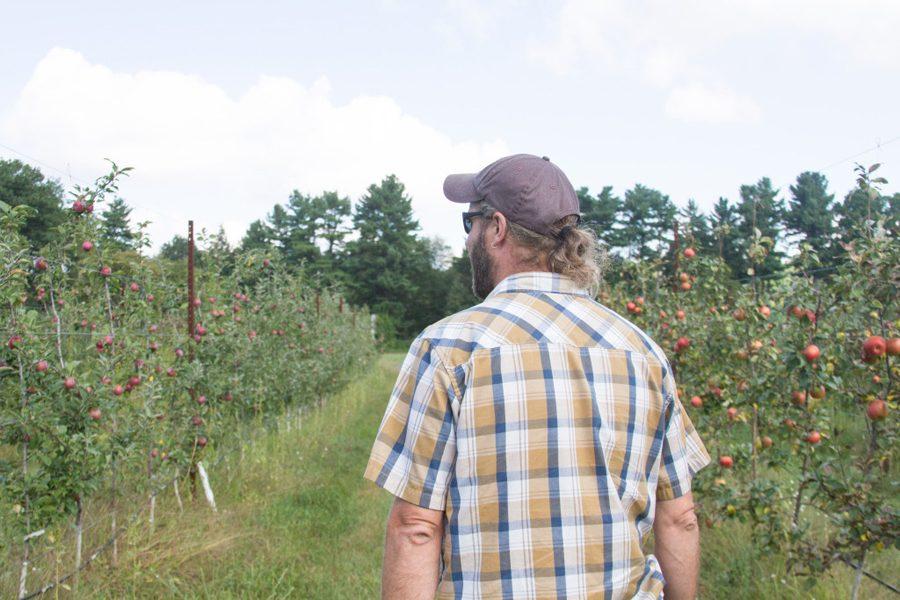 Bradshaw walking through the orchard Sept. 11
