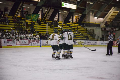 The women's hockey team celebrates together after a goal against Boston College Jan. 20. The team's first regular season game will be against Providence Oct. 1.