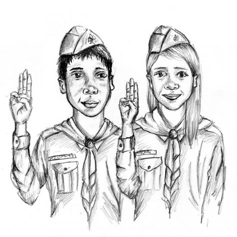 "Scout's honor"" inequality"