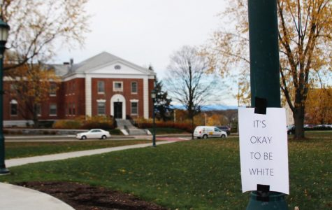 'It's Okay to Be White' posters linked to national effort