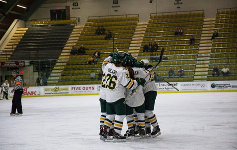 Women's hockey falls at home