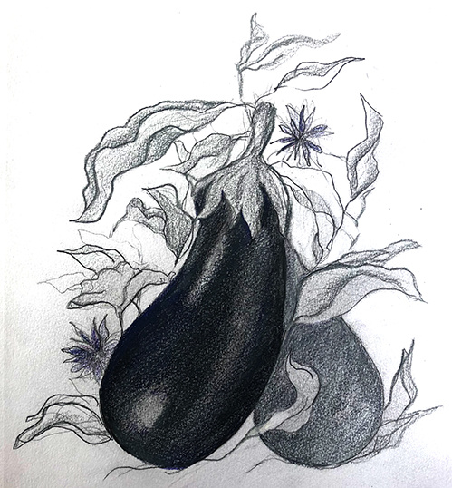 Eggplants: Cooking and Connecting with the Old World