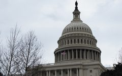 Research funding halts in shutdown