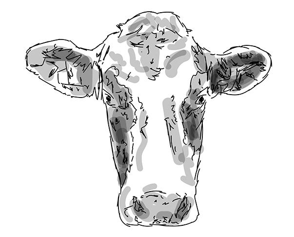 (Online)Cow_NoahZhou
