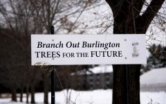 Citizens try to save Burly's tree canopy