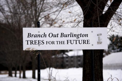 The Branch Out Burlington! sign stands in front of a backdrop of trees on the UVM Horticulture farm, Nov. 15. The organization grows and plants trees throughout Burlington.