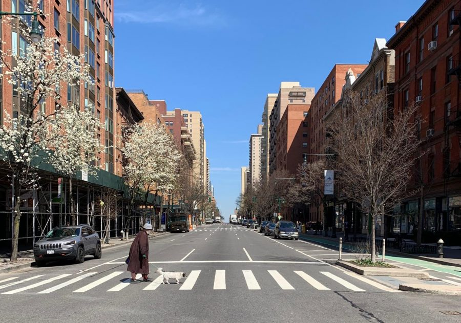 Columbus Avenue in New York City is empty except for a dog walker, Mar. 26.