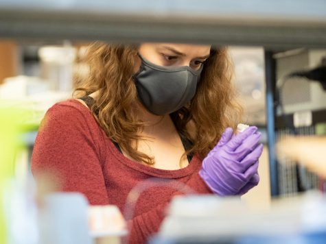 Graduate Student Manya Ruckhaus works in the Geology lab on Trinity, Oct. 22.