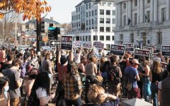 People holding Biden signs celebrate the president elects victory on Church Street Nov. 7.