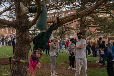 A student hangs upside down in a tree while another throws a football and their peers smoke joints behind them April 20