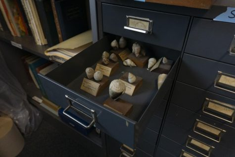 A new perspective of some of UVMs oldest displays