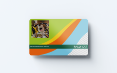 CatCards get a well-needed makeover